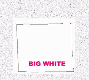 BIG WHITE – Video Interview